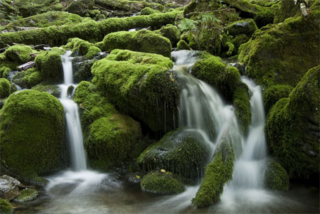 Waterfalls Look Blurred In A Photo